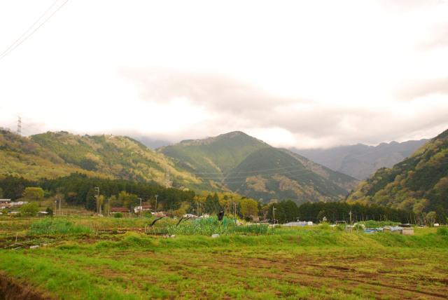 遠くに丹沢の山並_雲に覆われてみえる