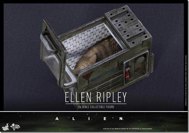 ripley-15