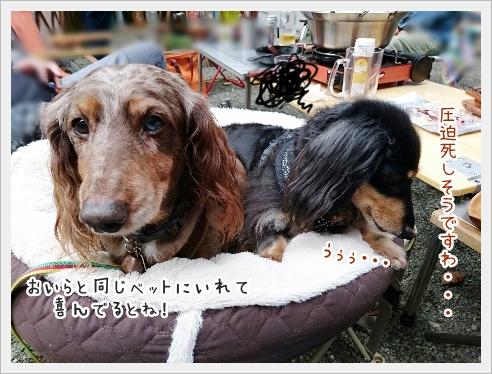 fc2_2016-10-24_08.jpg
