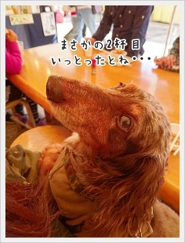 fc2_2016-11-04_10.jpg