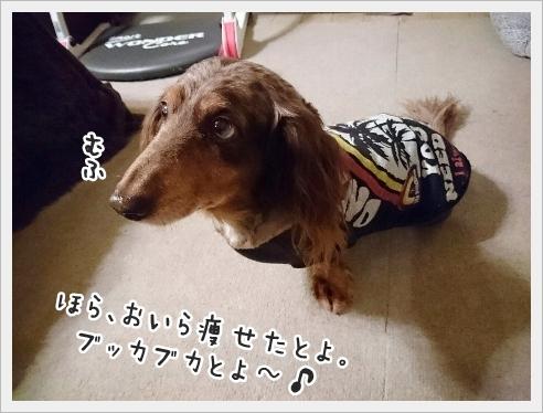 fc2_2016-11-18_02.jpg
