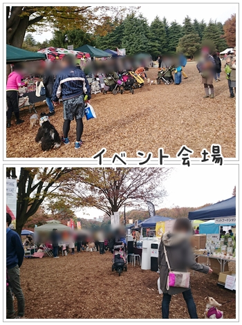 fc2_2016-11-29_05.jpg