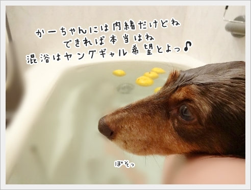 fc2_2016-12-14_06.jpg