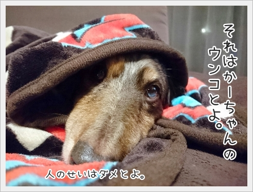 fc2_2016-12-21_04.jpg