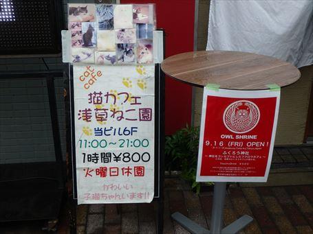 『エコノミーホテルほていや』ブログ 浅草にふくろうカフェ ...