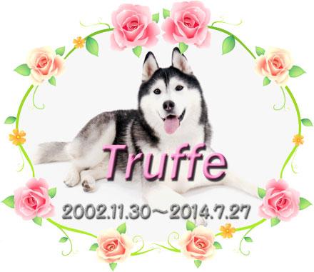 トリュフの命日