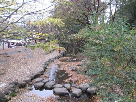 初雪前日の井の頭公園
