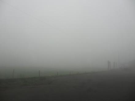 朝霧高原の霧