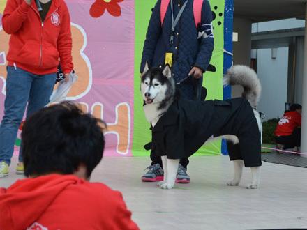 日獣祭2016
