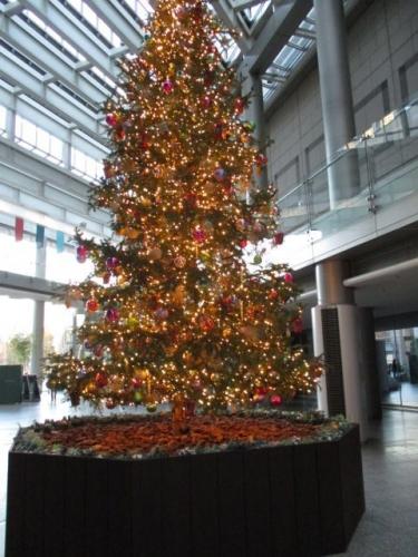 新宿OZONEのクリスマスツリー