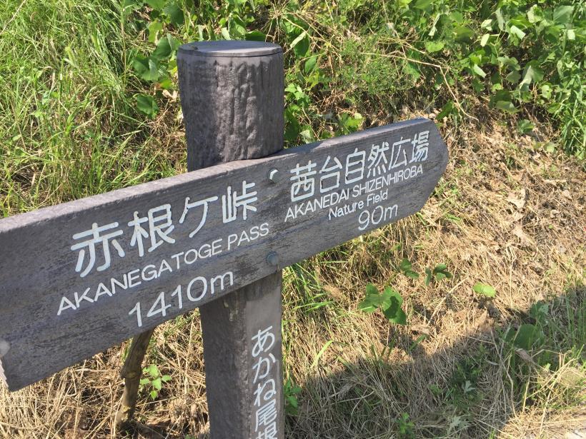 kashiwagiyama02.jpg