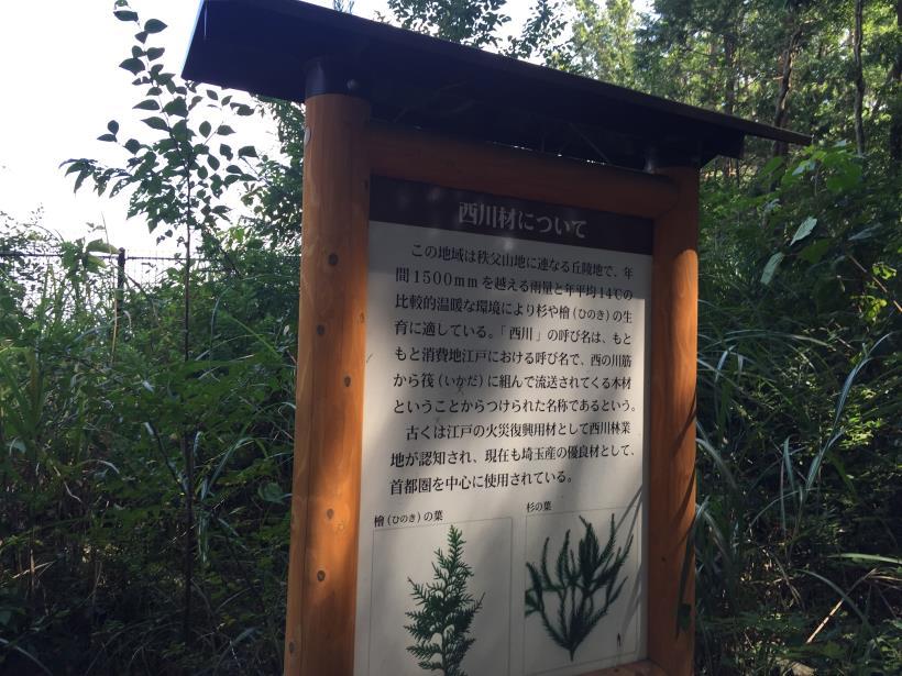 kashiwagiyama77.jpg