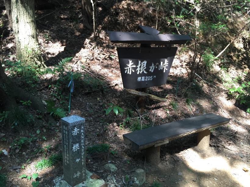 kashiwagiyama79.jpg