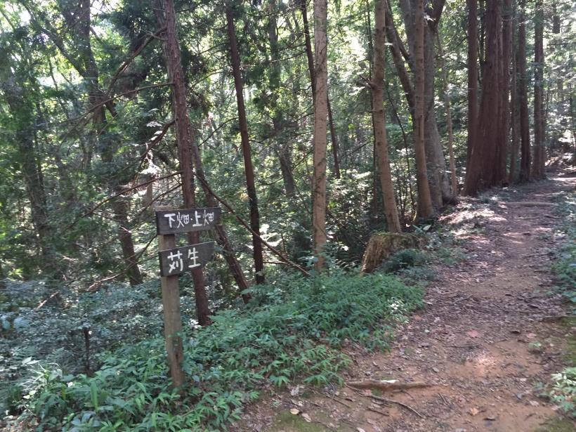 kashiwagiyama81.jpg