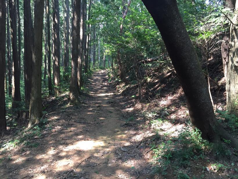 kashiwagiyama88.jpg