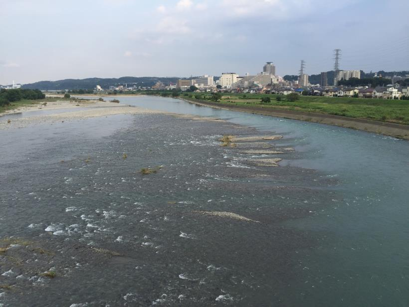 kashiwagiyama91.jpg
