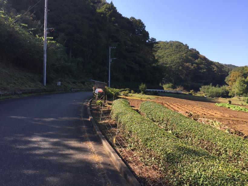 kusatoyama01.jpg
