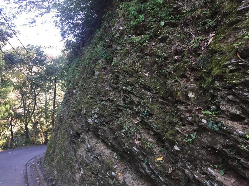 kusatoyama09.jpg