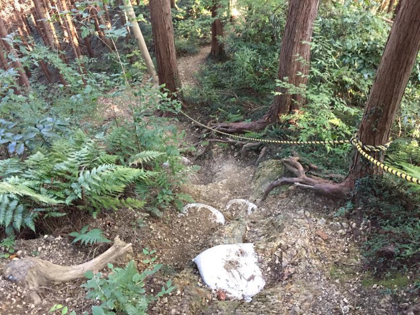 kusatoyamaA101.jpg