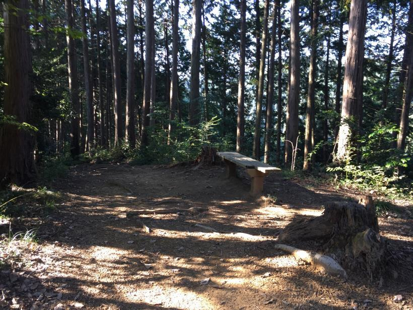 kusatoyamaA118.jpg