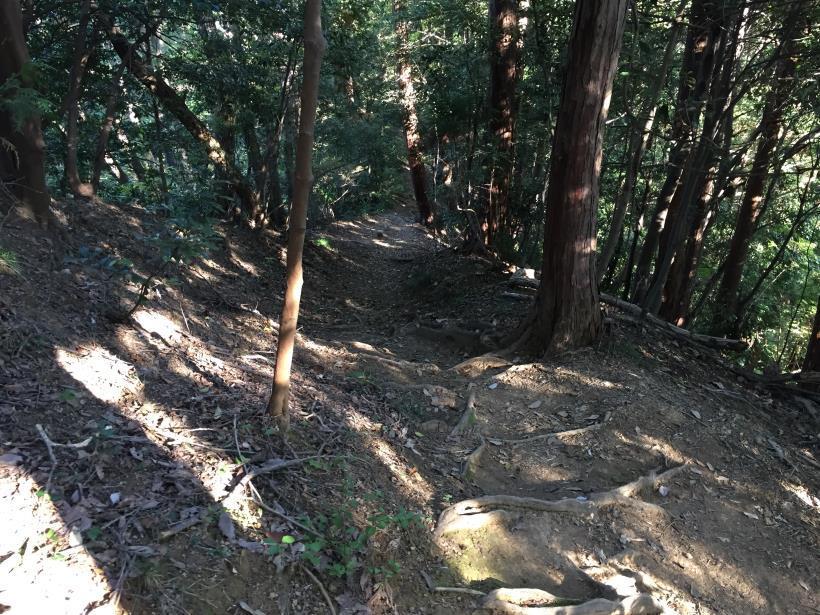 kusatoyamaA120.jpg