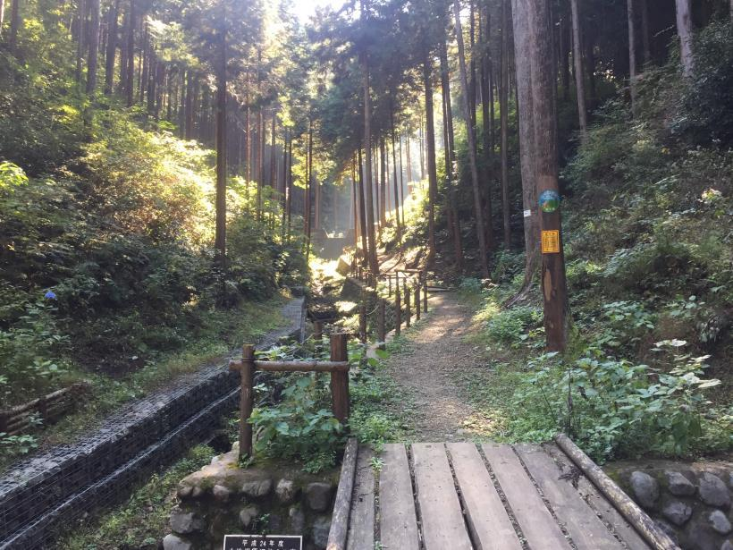 kusatoyamaA17.jpg