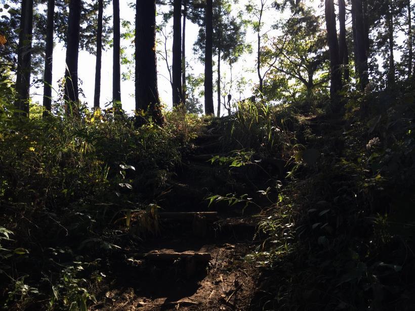 kusatoyamaA68.jpg