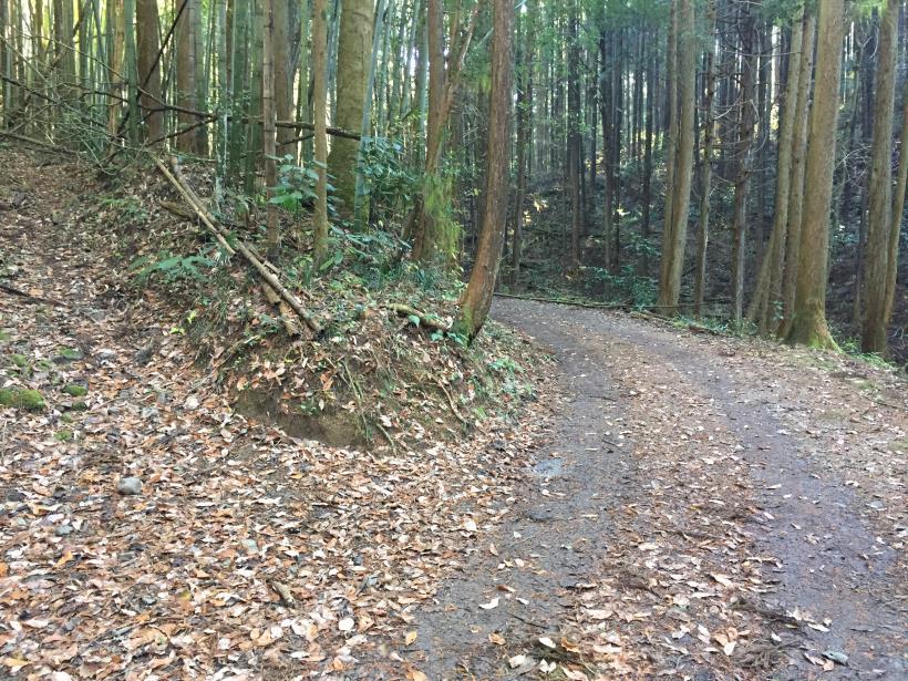 mahikisawakazamaki07.jpg