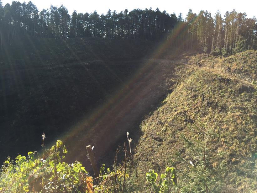 mahikisawakazamaki115.jpg