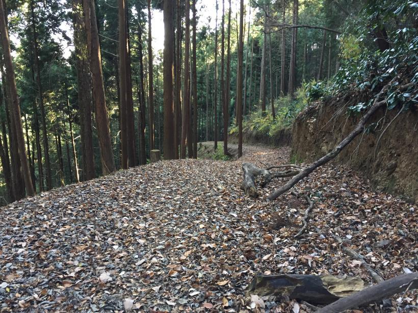 mahikisawakazamaki122.jpg