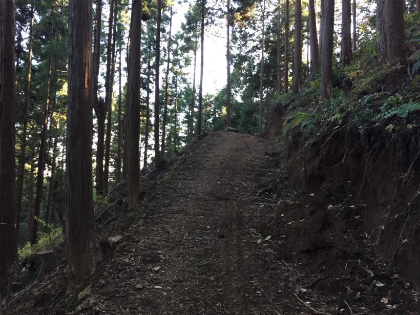 mahikisawakazamaki124.jpg