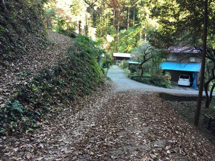 mahikisawakazamaki132.jpg