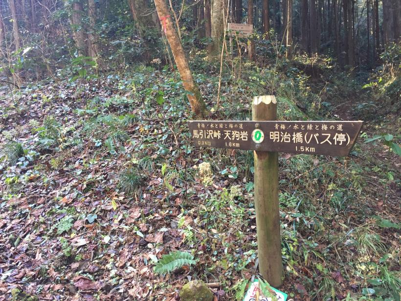 mahikisawakazamaki34.jpg