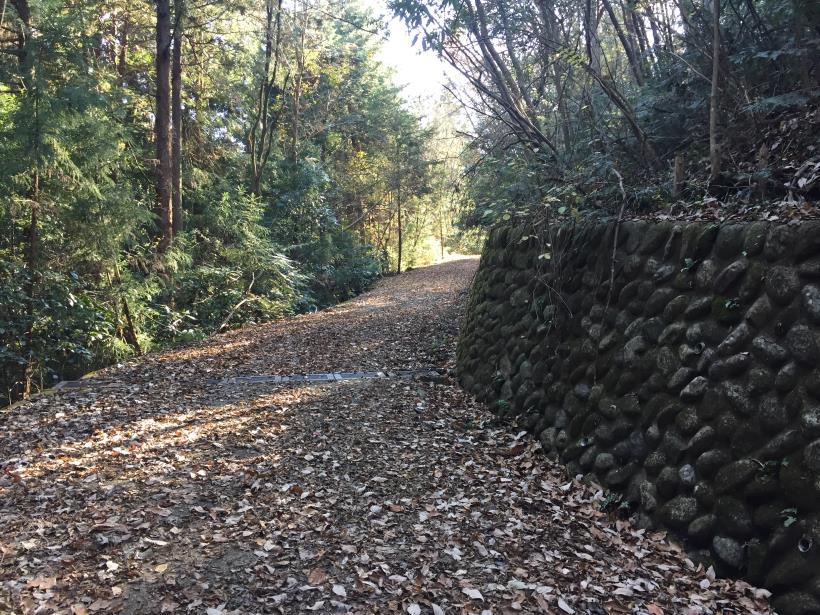 mahikisawakazamaki39.jpg