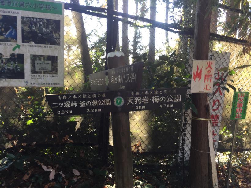 mahikisawakazamaki43.jpg