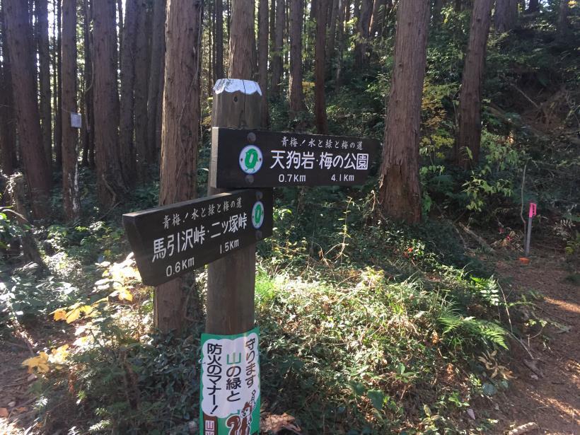 mahikisawakazamaki57.jpg
