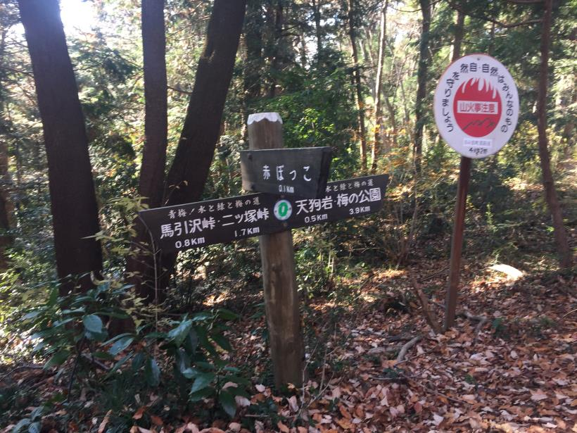 mahikisawakazamaki60.jpg