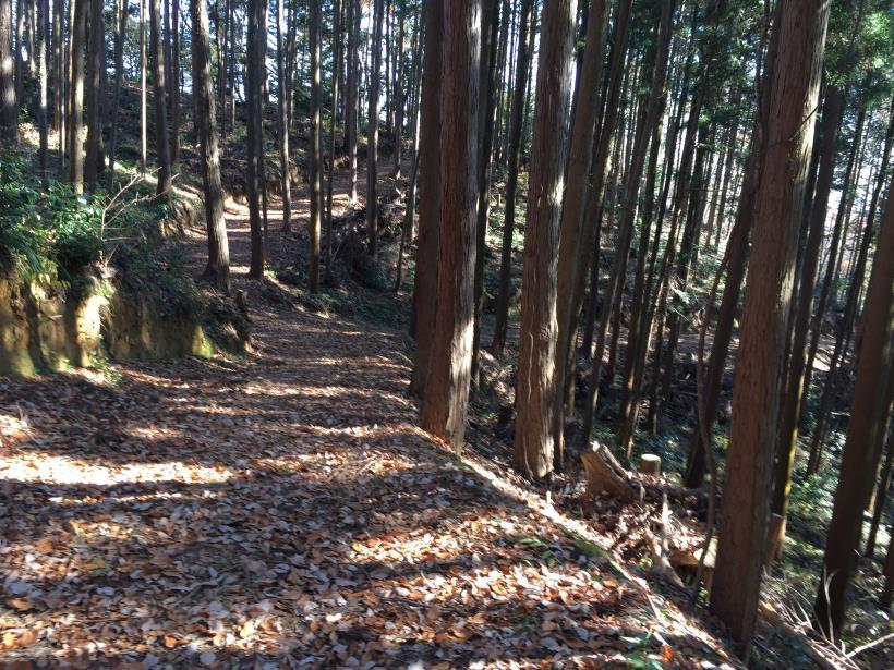 mahikisawakazamaki82.jpg