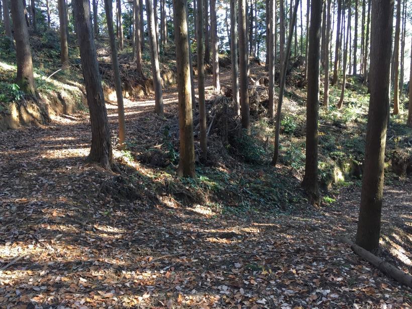 mahikisawakazamaki83.jpg