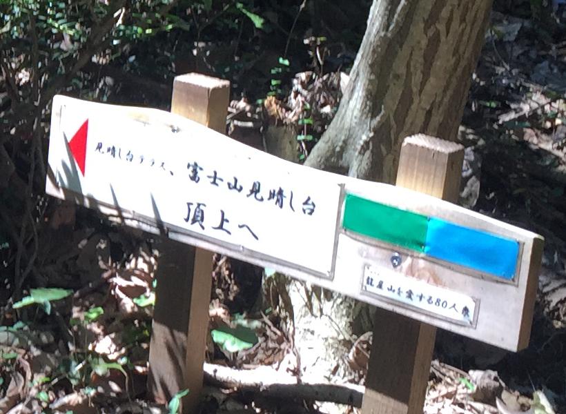 ryuugaisan62B.jpg
