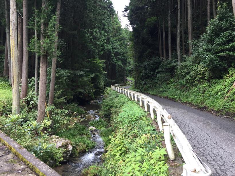 sekihachi11.jpg