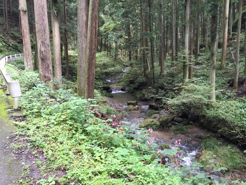 sekihachi14.jpg