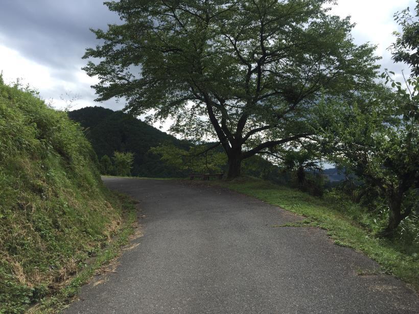 sekihachi22.jpg