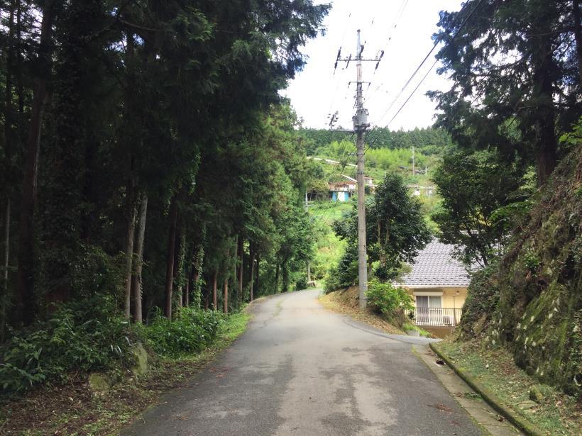 sekihachi28.jpg