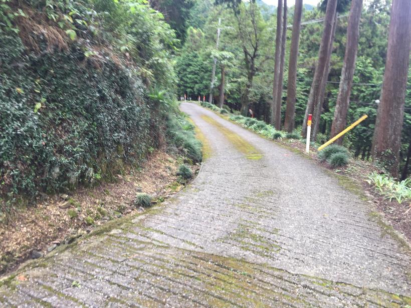 sekihachi76.jpg