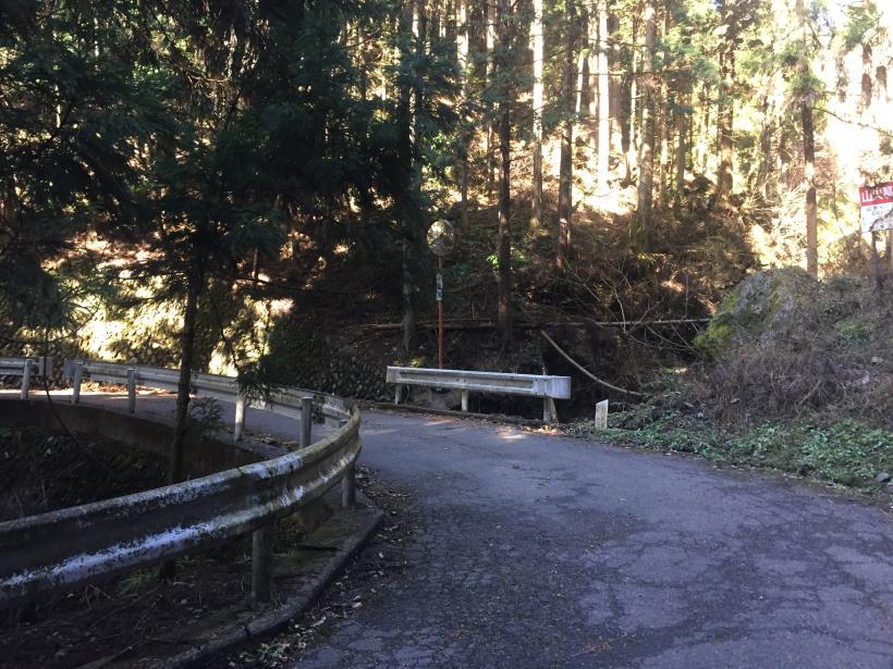 umenokidaizawa05.jpg
