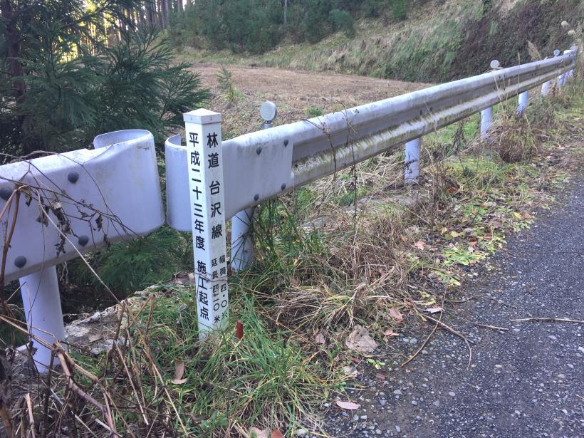 umenokidaizawa100.jpg