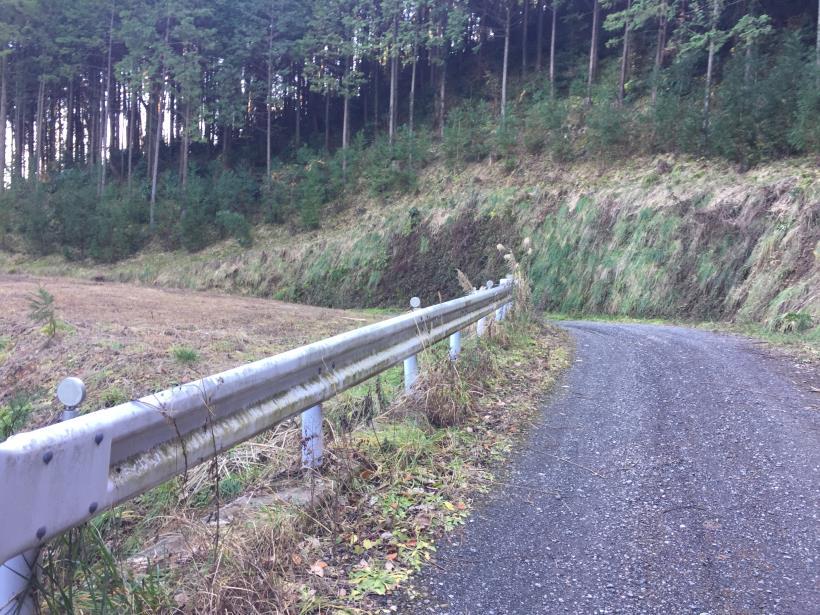 umenokidaizawa101.jpg