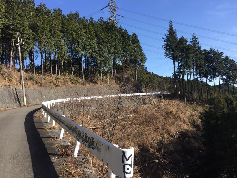 umenokidaizawa15.jpg