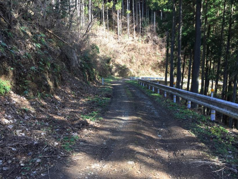 umenokidaizawa37.jpg